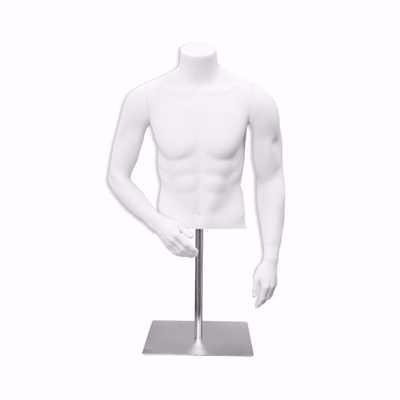 Male Fiberglass Torso Form Pose 3