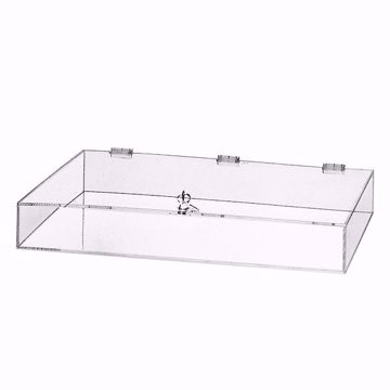 Acrylic Counter Display Case with Lock